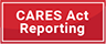 The Coronavirus Aid, Relief and Economic Security (CARES) Act Reporting