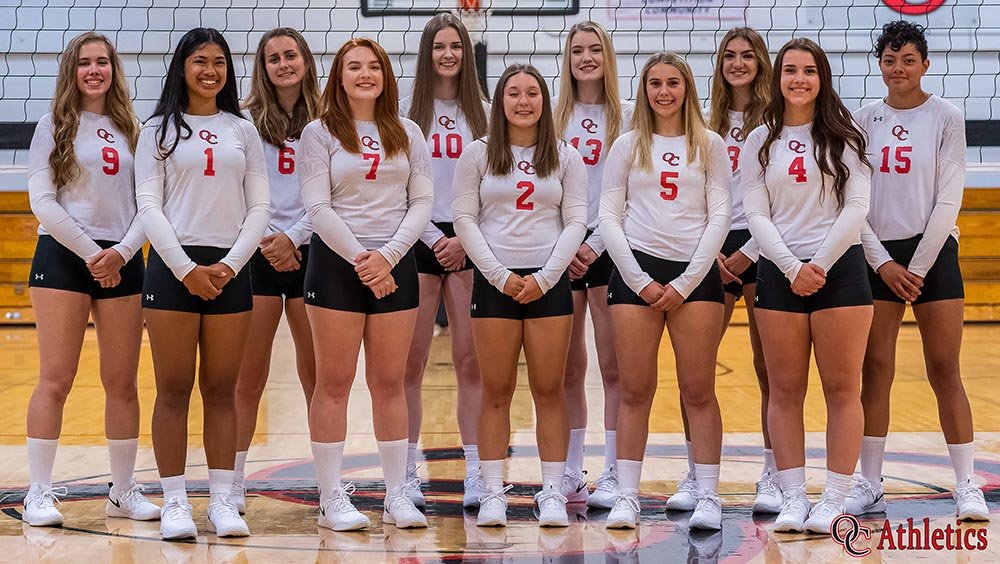 Olympic College Women's Volleyball Team 2019