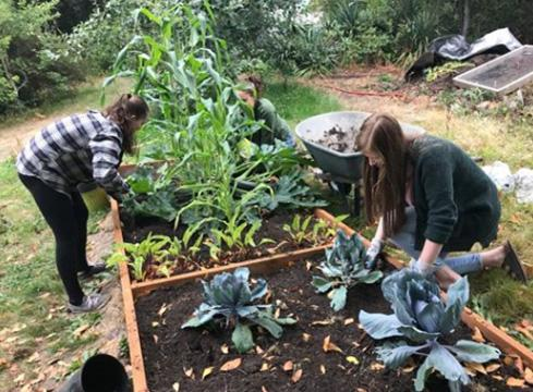 Students volunteers tend the raised beds at the Learning Landscape.