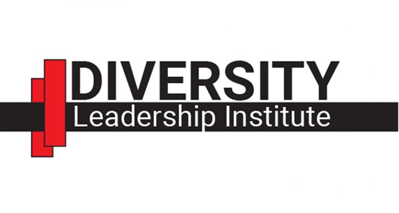Diversity Leadership Institute