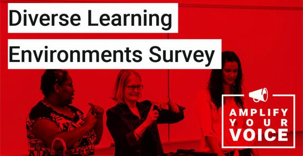 Diverse Learning Environments Survey