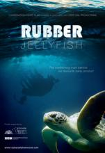 rubber jelly fish movie poster_demand.film- Rubber Jelly Fish Movie Can't be Overlooked